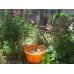 Соларно захранващ се градински фонтан с 3 разпръсквача